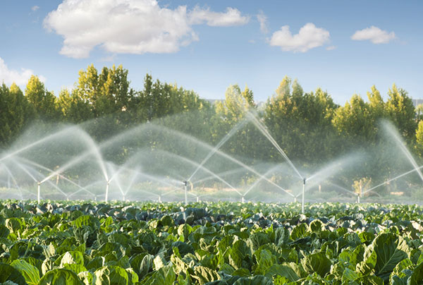 Agricultural Irrigation