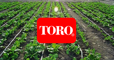 agricultural-toro